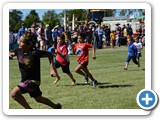 Barcaldine Tree of Knowledge Festival