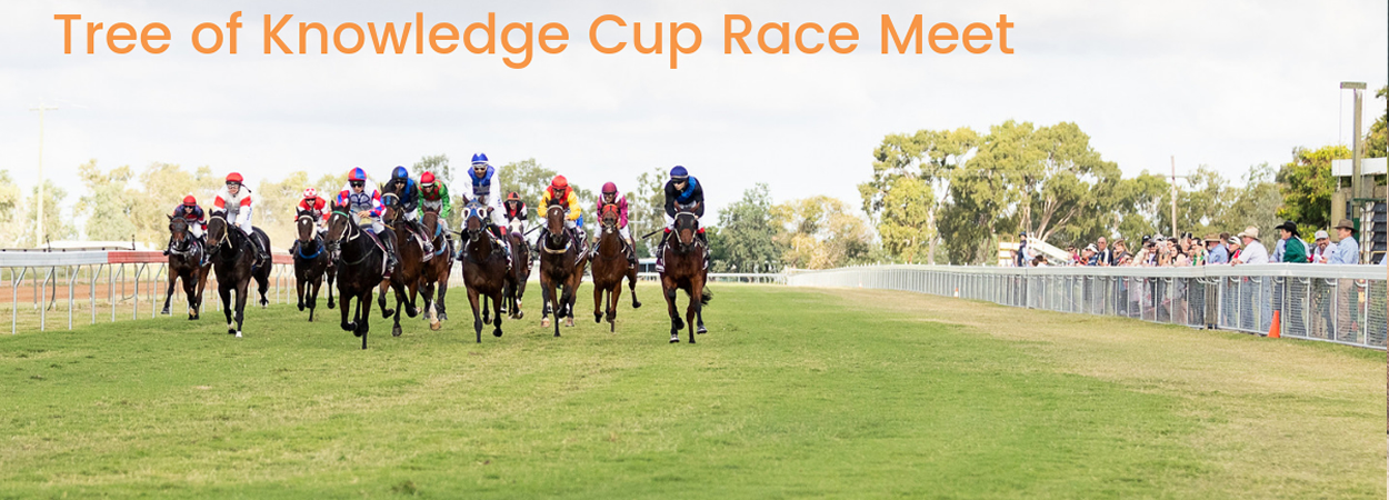 Barcaldine Tree of Knowledge Festival - Barcaldine Cup Race Day